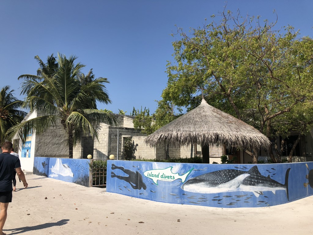 Maldiverne – dykning